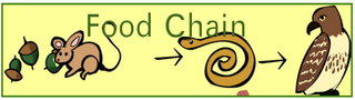 foodchain.png